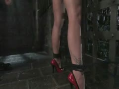 Busty blonde submits and gets fucked in bondage.