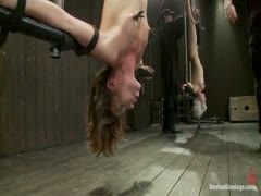 Double Inverted Sybian Suspension