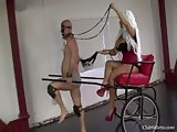 Pony slave training day