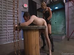 Disciplining slave in hardcore pegging