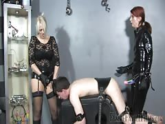 Young sub slave double pegged